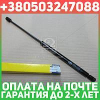 ⭐⭐⭐⭐⭐ Амортизатор багажника ШКОДА Octavia (1U2) (производство  Magneti Marelli кор.код. GS0216)  430719021600