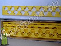 Комплект лотков на перепелиные яйца
