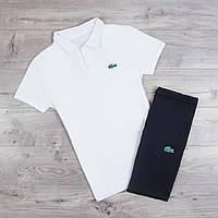 Спортивный костюм мужской летний Lacoste White | Комплект Шорты + футболка поло Лакоста ТОП качества