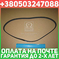 ⭐⭐⭐⭐⭐ Ремень поликлиновый 4PK970 (производство  DONGIL)  4PK970