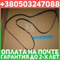 ⭐⭐⭐⭐⭐ Ремень поликлиновый 6PK2255 (производство  DONGIL)  6PK2255