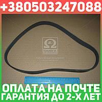 ⭐⭐⭐⭐⭐ Ремень поликлиновый 6PK950 (производство  DONGIL)  6PK950