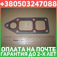 ⭐⭐⭐⭐⭐ Прокладка, водяной насос  DAF - 1458936 MX 315 (пр-во Elring)