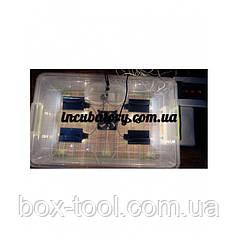 Инкубатор для яиц Курочка Ряба 56 пластик