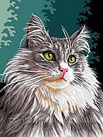 РукИТвор Картина по номерам (VK177) Сибирская кошка (30 х 40 см)