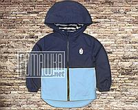Детская 98 (92) 1,5-2 года куртка ветровка парка для мальчика на трикотаже легкая с капюшоном 4693 Голубой
