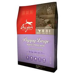 ORIJEN PUPPY LARGE BREED для цуценят великих і гиганскими порід 11,4 кг