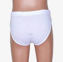 Белые трусики мальчик (Y701) | 18 шт., фото 3