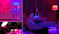 Новинки. Цветные светодиодные лампочки MR16.