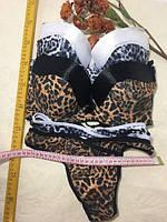 """Комплект женского белья тигровый, чашка C (1 уп/6 шт) """"LASKA"""" купить недорого от прямого поставщика"""