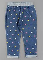 Лосины с имитацией джинсы для девочек Lemon Tree, 1-5 лет.