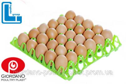 Лоток для яиц пластиковый Standard 60-65 г