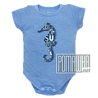 Детский боди футболка 68 3 5 мес летний для мальчика ребёнка новорожденных малышей лето из КУЛИР 4687 Голубой, фото 1