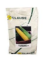 ТУРБИН F1 / TURBIN F1 5 000 шт - Кукуруза Сахарная Clause / Клоз