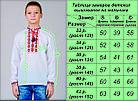 Детская вишиванка для мальчика Козачок ( голубой), фото 3