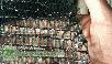 Сетка на метраж - 60%  ШИРИНА - 3м  сетка от птиц, огородная сетка, сетка для затенения, фото 2