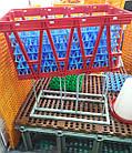 Ящик для перевозки яиц в лотках Lindamatic, фото 6