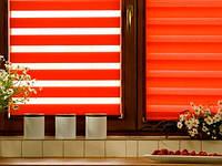 Тканевые роллеты (рулонные шторы) День-Ночь