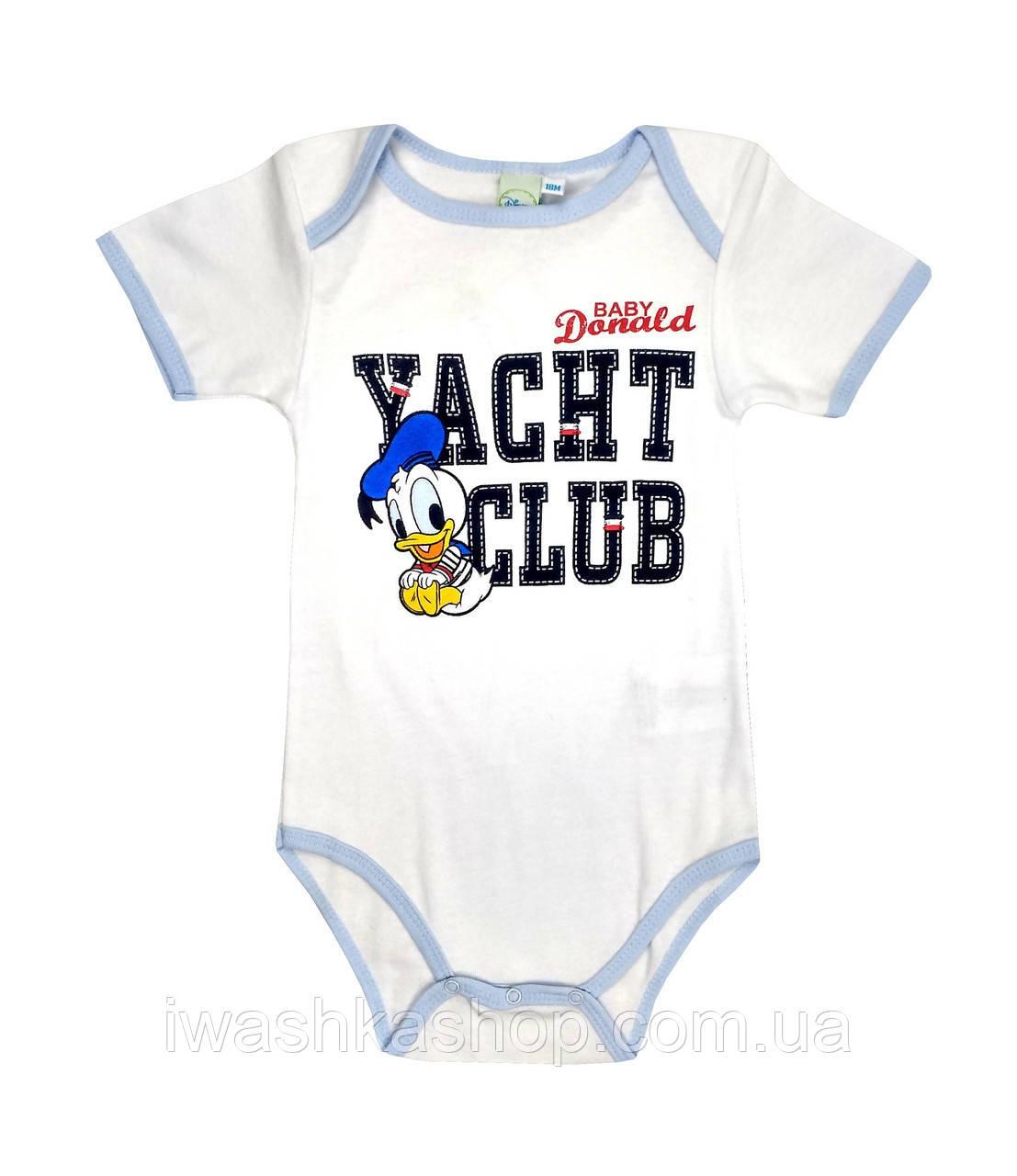 Стильное белое боди с коротким рукавом, с принтом Доналда Дака (Donald Duck) на мальчика 12 месяцев, Disney