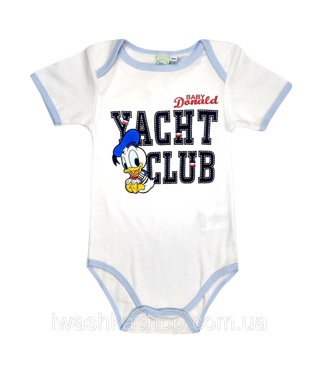 Стильное белое боди с коротким рукавом, с принтом Доналда Дака (Donald Duck) на мальчика 9 месяцев, Disney