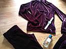 Бархатный велюровый бархат велюр женский спортивный костюм С-ка бордо бордовый марсала марсаловый, фото 3