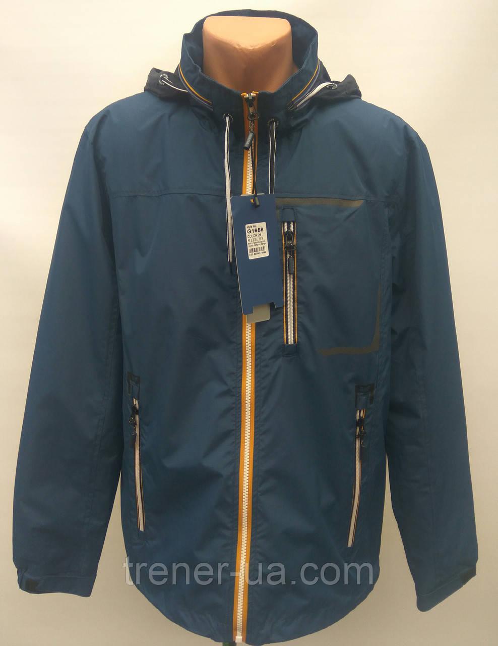 Ветровка сетка мужская в стиле Gentleman Forest GMF синяя