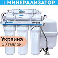 Фильтр обратного осмоса Ecosoft Standard 6-50M с минерализатором (MO650MECOSTD)