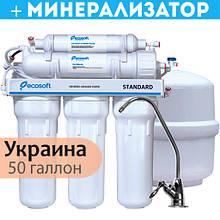 Фільтр зворотного осмосу Ecosoft Standard 6-50M з мінералізатором (MO650MECOSTD)