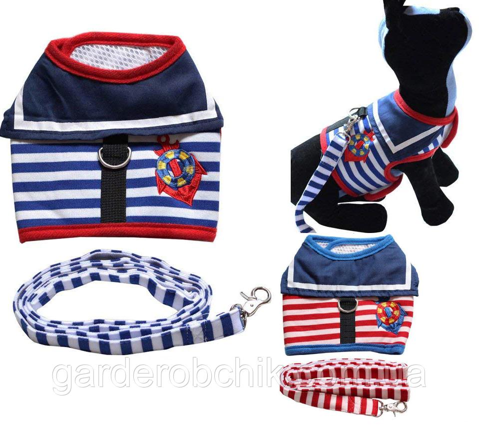 """Мягкая шлейка с поводком  """"Моряк"""" для  кота, собаки. Одежда для  кошек, собак"""