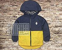 Детская 98 (92) 1,5-2 года куртка ветровка парка для мальчика на трикотаже легкая с капюшоном 4693 Жёлтый