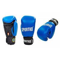 Перчатки боксерские профессиональные ФБУ SPORTKO кожаные UR ПК1 (синий)
