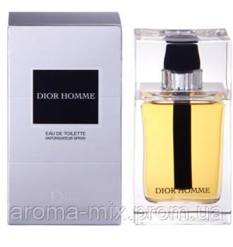 Christian Dior Dior Homme - мужская туалетная вода, фото 1