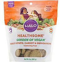 Halo, Healthsome, Garden of Vegan, Печенье для собак, Рецепт со сладким картофелем, морковью и киноа, 8 унц. (226,7 г)