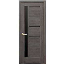 """Межкомнатная дверь ПВХ """"Грета"""" Черное стекло (5 ЦВЕТОВ)"""