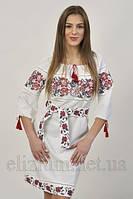 Вишиванка плаття Ружа і калина 6013