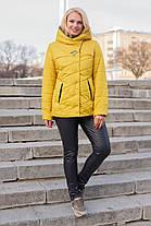 Демисезонная куртка большие размеры 50-62 с капюшоном, фото 3