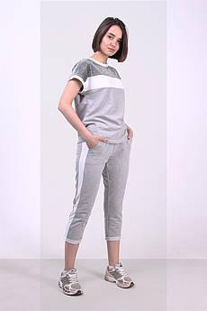Батальный трикотажный женский костюм Лоя-1 с лампасами ( M - 4XL )