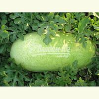 Семена арбуза ЧАРЛЬСТОН ГРЕЙ, 0, 5 кг