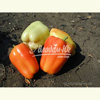 Семена перца ФЛАМИНГО F1, 5 гр, фото 1