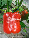 Семена перца ГЕРКУЛЕС F1, 50 гр, фото 2