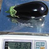 Семена баклажана КЛАССИК F1, 50 гр., фото 2