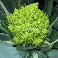 Семена цветной капусты ДЖИТАНО F1, 1000 семян New!, фото 1