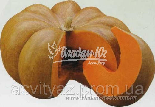 Семена тыквы МУСКАТ ДЕ ПРОВАНС, 0, 5 кг.