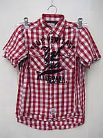 Рубашка в клетку для мальчиков 116,122,128,134,140 роста на короткий рукав Хлопок