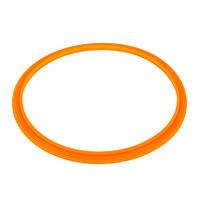 Emaux Уплотнительное кольцо Emaux прожектора LED/UL-P100 2021004