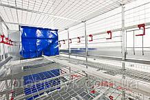 Клеточное оборудование для содержания родительского стада