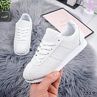 9094f6f7 Белые женские кроссовки с перфорацией оптом в Украине. Сравнить цены ...