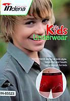 Детские подросток боксёры хлопок Indena, 7-15 лет, 85523