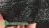 Затеняющая сетка 85% (1,5х100) рулон , фото 2
