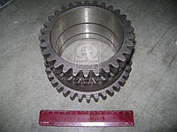 Шестерня промежуточного редуктора КПП МТЗ-80, 82 (пр-во г.Ровно)